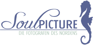 Logo-Soulpicture